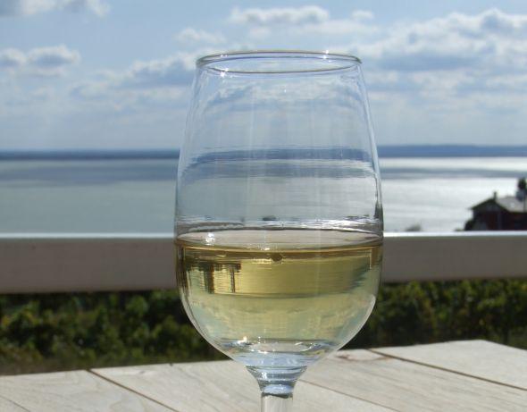 Idén is kiválasztották a tudományos élet borait