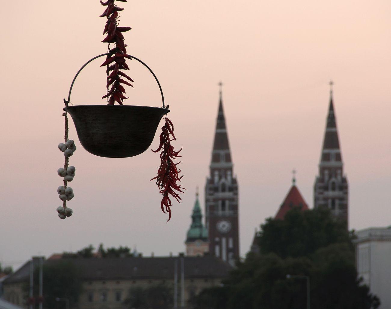 Nemzetközi Tiszai Halfesztivál Szegeden