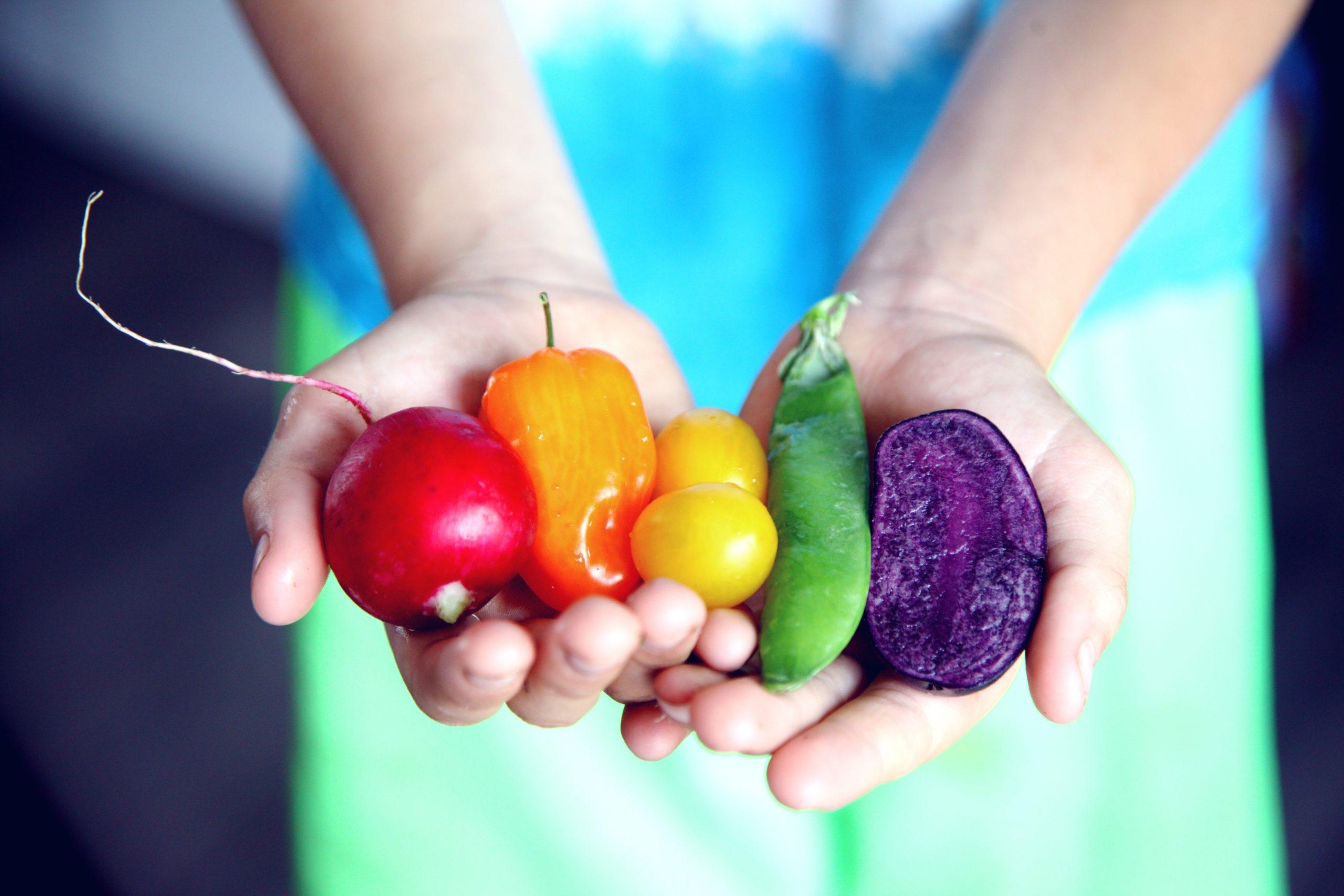 60 millió Ft értékű élelmiszerrel támogatja a Lidl a Heim Pál Gyermekkórházat