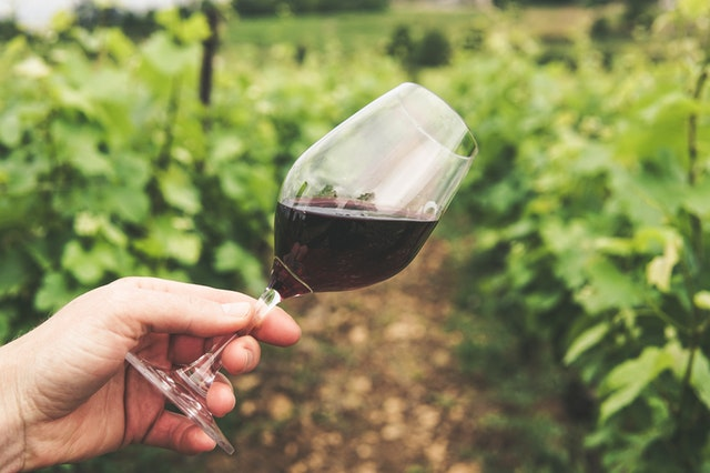 A borturizmus áll az őszi kampány fókuszában